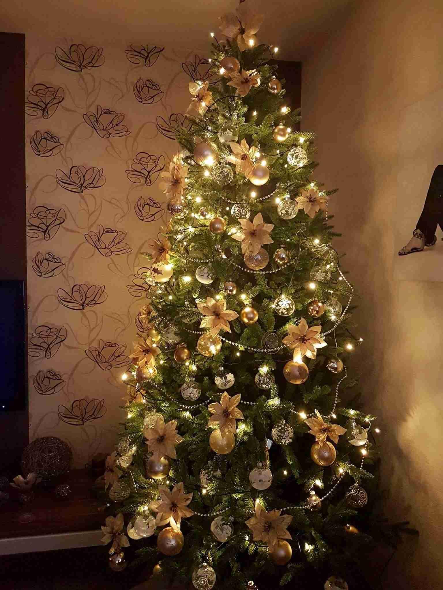 3582f84ff Zlatá a strieborná. To sú dve farby, ktoré k Vianociam neodmysliteľne  patria. Vianočný stromček ozdobte kvetmi z rastliny zvanej Vianočná hviezda.