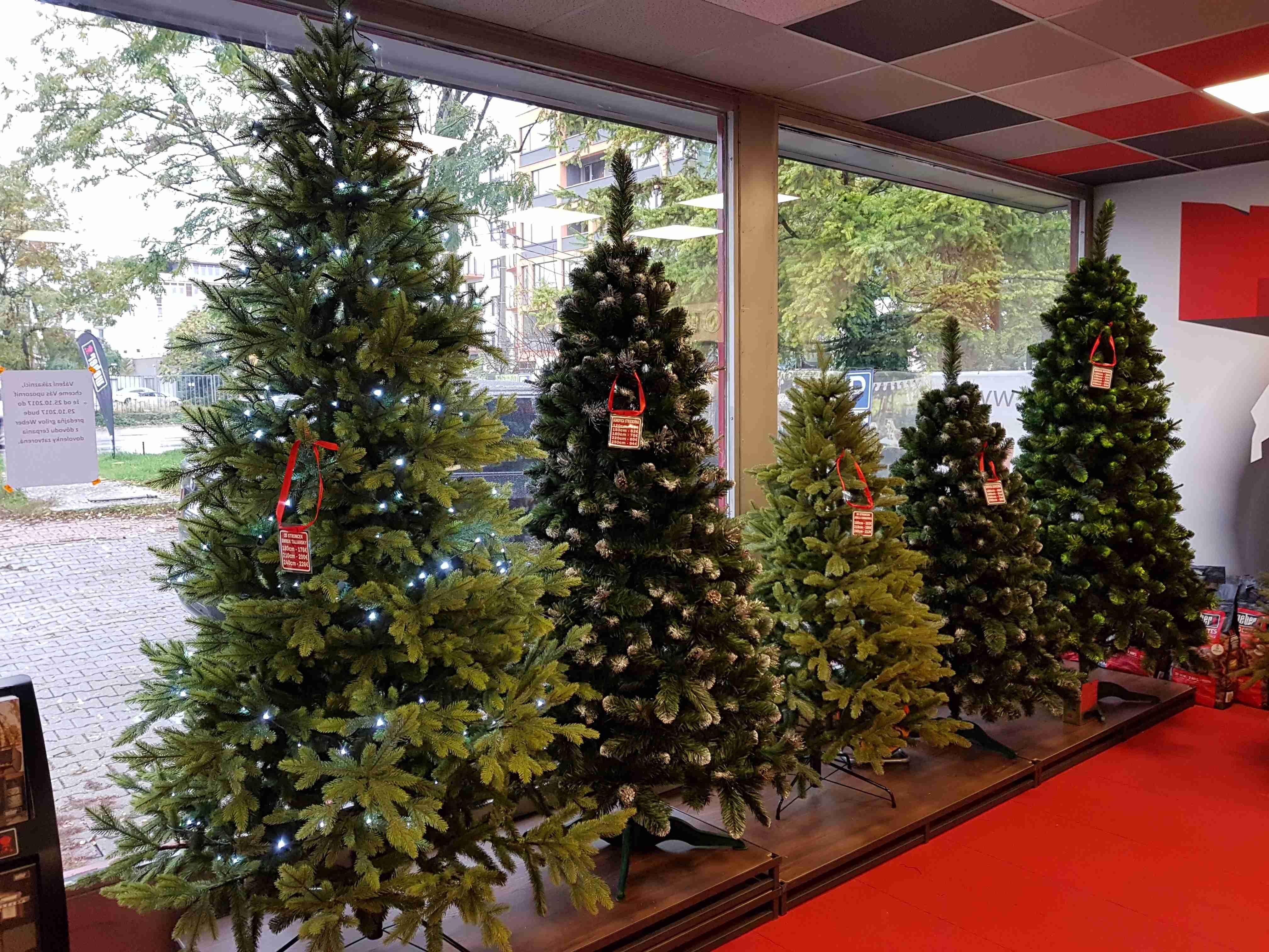 de157d3bcb8c Vianočné stromčeky Bratislava  Máme pre vás skvelý tip!