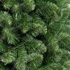 Detailná fotka prirodzene zelených vetvičiek borovice na pníku.