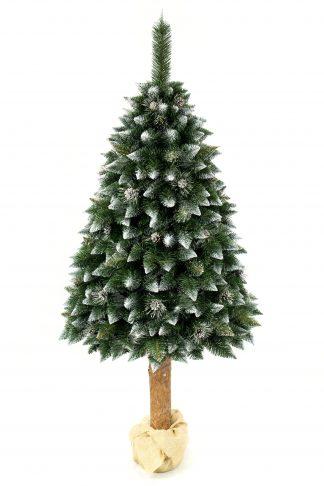 Umelý vianočný stromček stojí na cca 60 cm vysokom drevenom pníku. Ten je zaliatý v betóne a pre krajší vzhľad je omotaný vrecovinou . Koruna stromu ma špicaté končeky vetvičiek zafarbené bielou farbou . Stromček je ozdobený striebornými borovicovými šiškami .