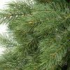 Detailná fotka 3D ihličia borovice. Vetvičky majú prirodzene zelenú farbu a dokonalý tvar borovicového ihličia .