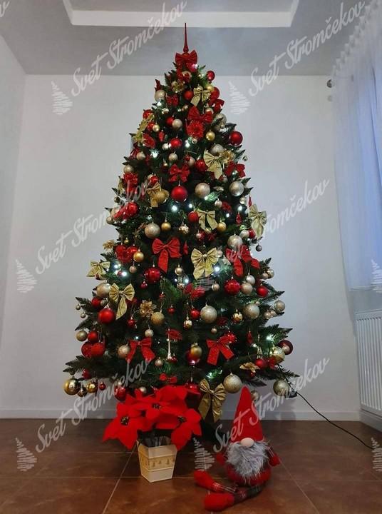 Zelený vianočný stromček smrek ozdobený červenými guľami a mašlami doľadenými so zlatými mašlami.