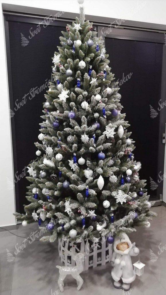 Vianočný stromček s jemne zasneženými končekmi vetvičiek ozdobený bielými a modrými vianočnými ozdobami .
