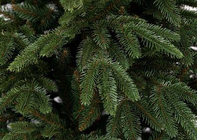 3D ihličie - 3D stromček Smrek Kalifornský