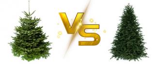 Živý vianočný stromček verzus umelý stromček