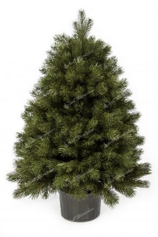 Vianočný stromček FULL 3D Mini Borovica. Stromček je zelenej farby.